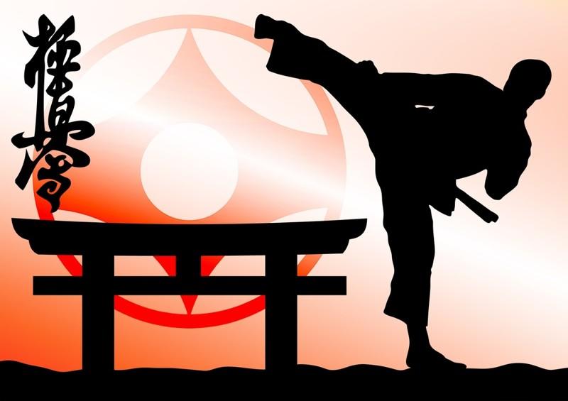 Плюсы и минусы занятия каратэ Киокушинкай